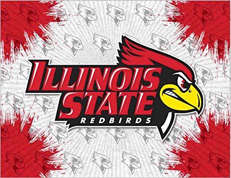 Amazon.com: Illinois State Logo Canvas Art: Sports & Outdoors.