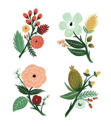 17 Best ideas about Flower Illustrations on Pinterest.