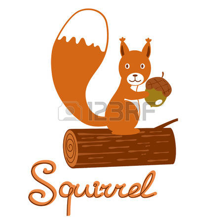 10,851 Squirrel Stock Illustrations, Cliparts And Royalty Free.