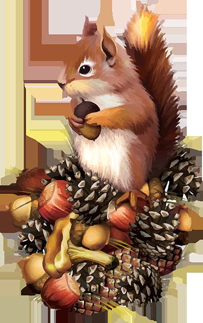 tubes écureuils.