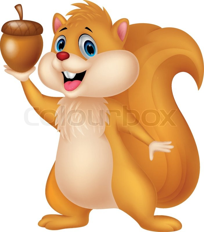 Vector illustration of Squirrel cartoon with nut.
