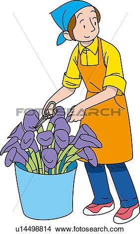 Drawings of Flower Shop, Illustrative Technique u14498814.