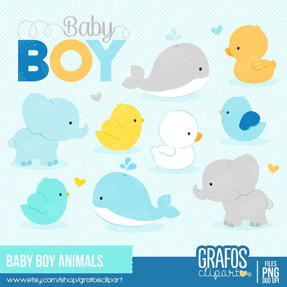BABY BOY ANIMALS.