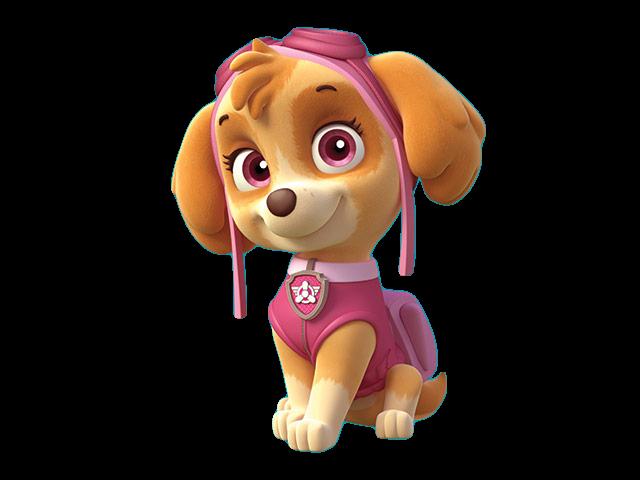 Imágenes personajes de Patrulla de Cachorros o Paw Patrol.