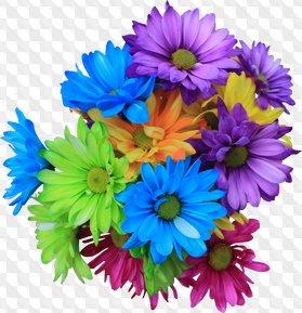 Flores: Gerberas, lirios y crisantemos, imágenes PNG, sin fondo.