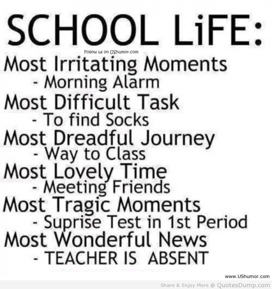 Best Quote About Life Funny Quotes School Life Rulesin White.