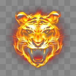 Tiger HD PNG Transparent Tiger HD.PNG Images..