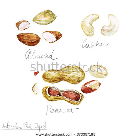 Painting Nuts Stock Images, Royalty.