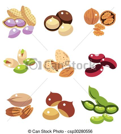Clipart Vector of Collection of Nuts and Beans vector csp30280556.