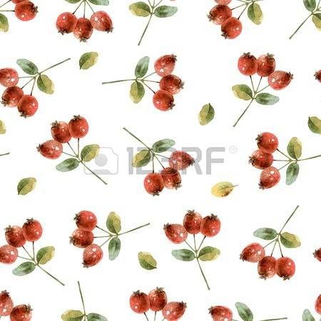 280 Immature Stock Vector Illustration And Royalty Free Immature.