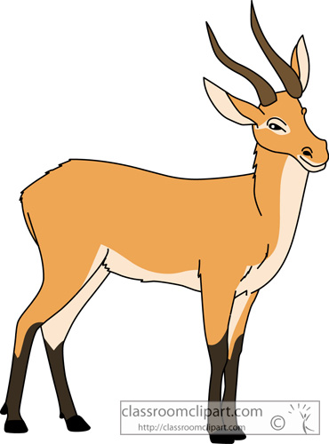 Clipart of impala animal.