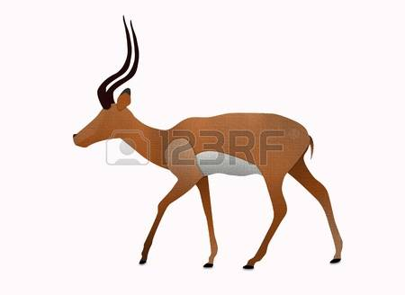 341 Impala Stock Illustrations, Cliparts And Royalty Free Impala.