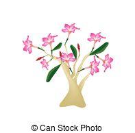 Impala lily Clip Art Vector and Illustration. 5 Impala lily.