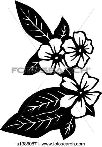 Clipart of , flower, impatiens, varieties, u13860871.
