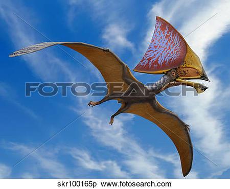 Stock Illustration of Tupandactylus imperator, a pterosaur from.