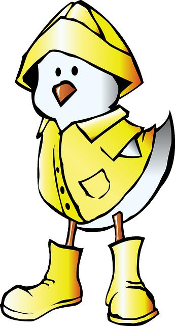 Free vector graphic: Chick, Animal, Bird, Rain, Raincoat.
