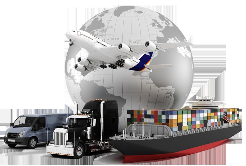 Import Export Best Institute Management #123019.