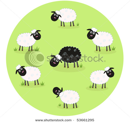 Showing a Single Black Sheep in the Middle of Other Sheep in This.