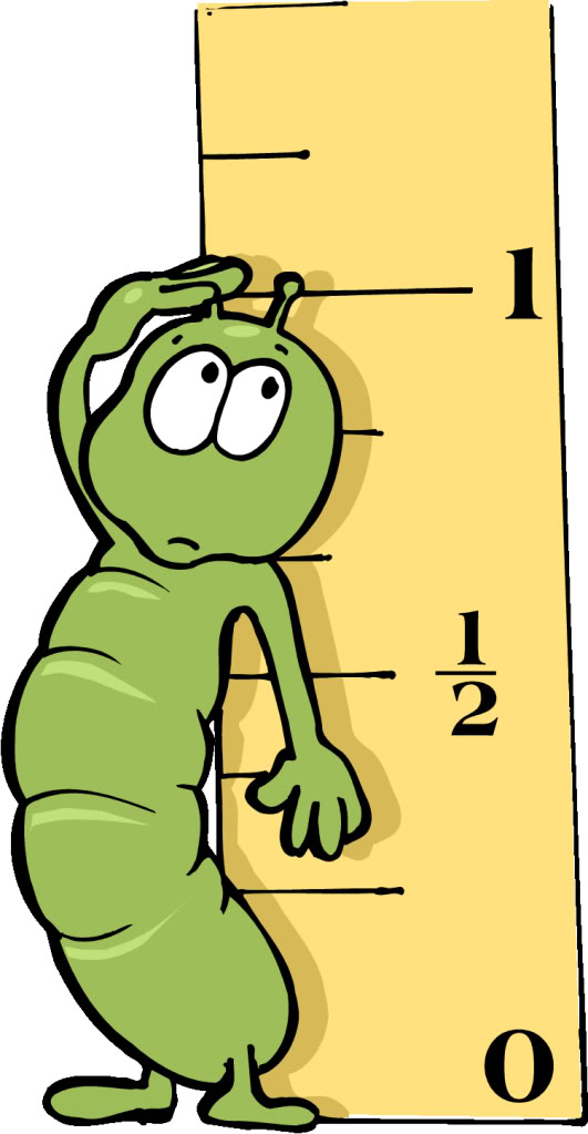 Showing post & media for Cartoon inch ruler.