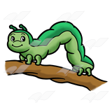 Inchworm Clipart & Inchworm Clip Art Images.