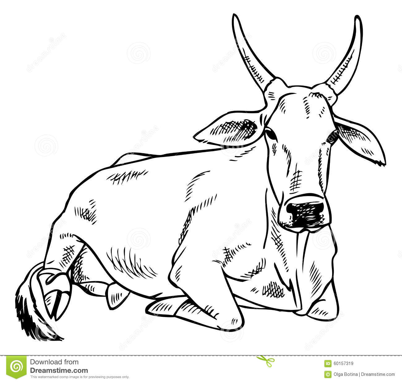 Zebu (Indian Humped Ox) Are Standing On The Beach Royalty Free.