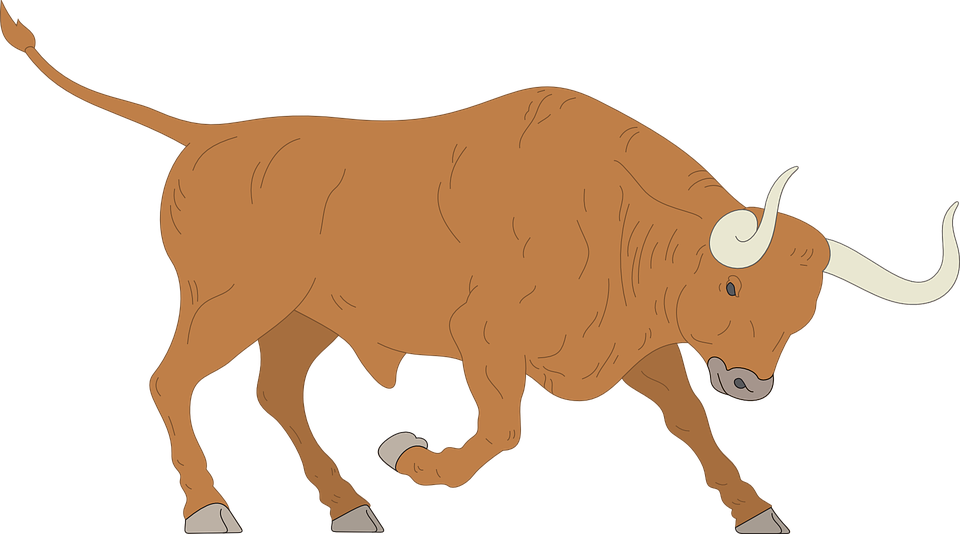 Free vector graphic: Angry, Charge, Bull, Horns, Animal.