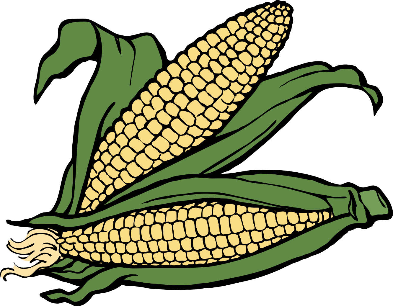 Indian Corn Clipart.