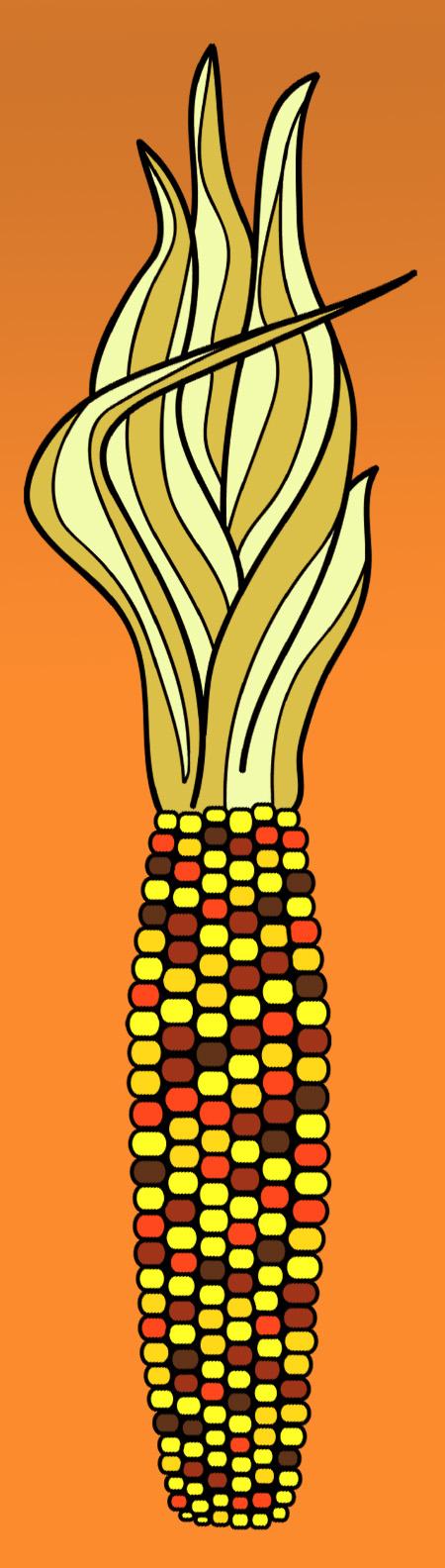 Indian corn clip art.