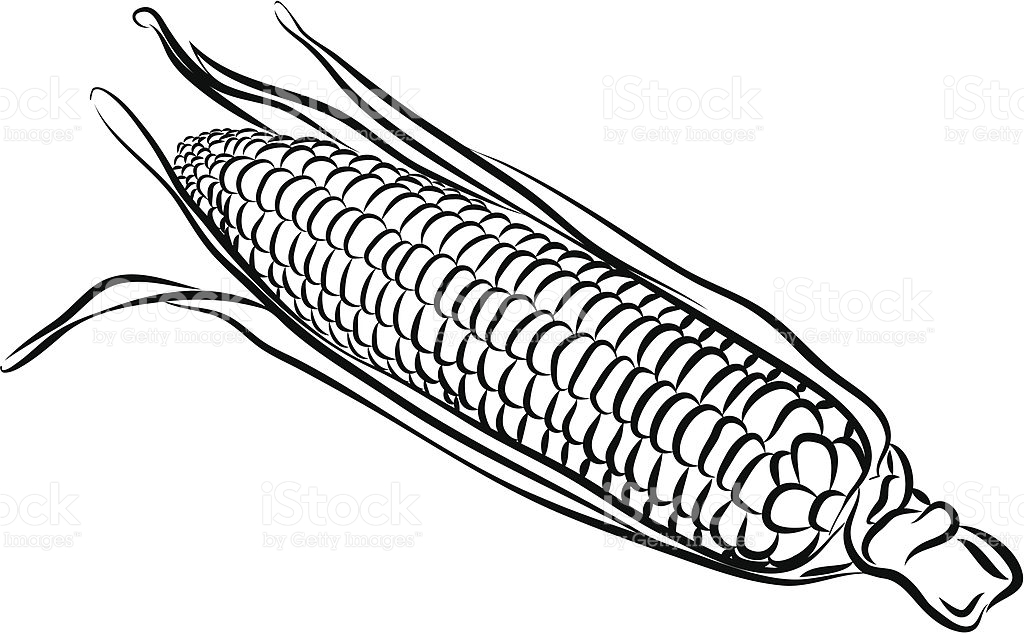 Sweet Corn Clipart Black And White.
