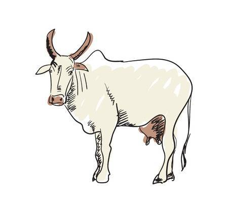 Indian cow clipart 2 » Clipart Portal.