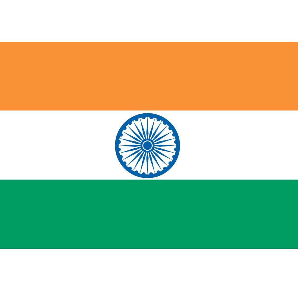 Indian Flag Logo.