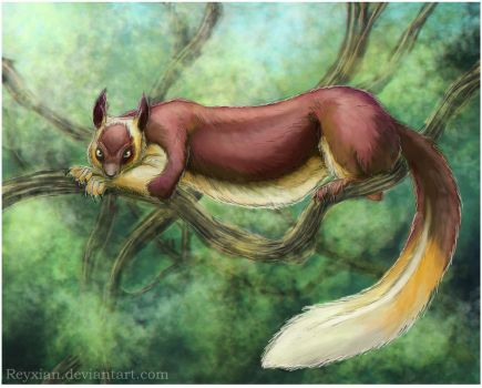 Indian giant squirrel clipart #11