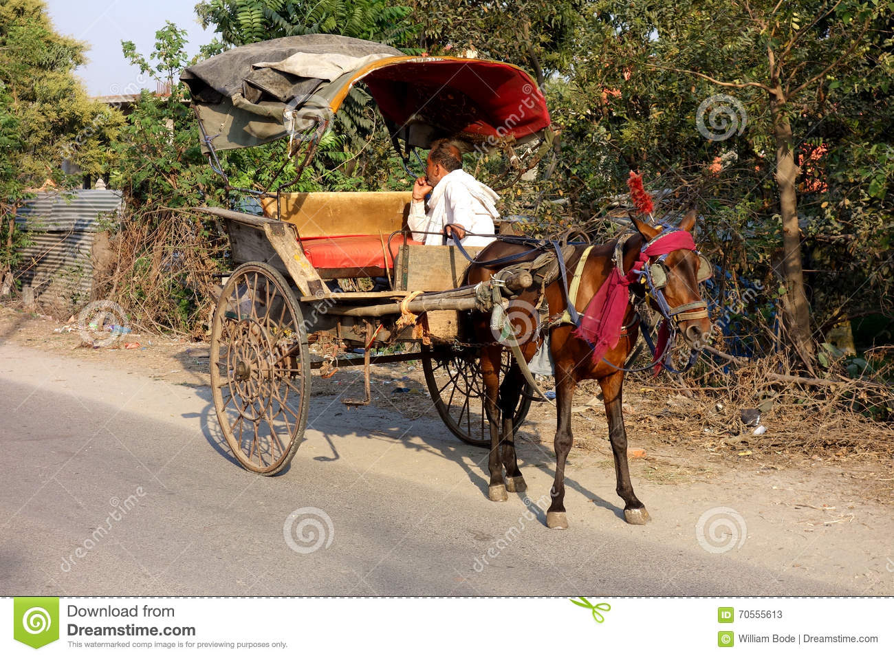 Man In Horse Carriage Editorial Stock Photo.
