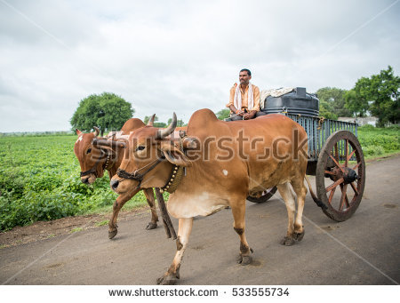 Bullock Cart Stock Images, Royalty.