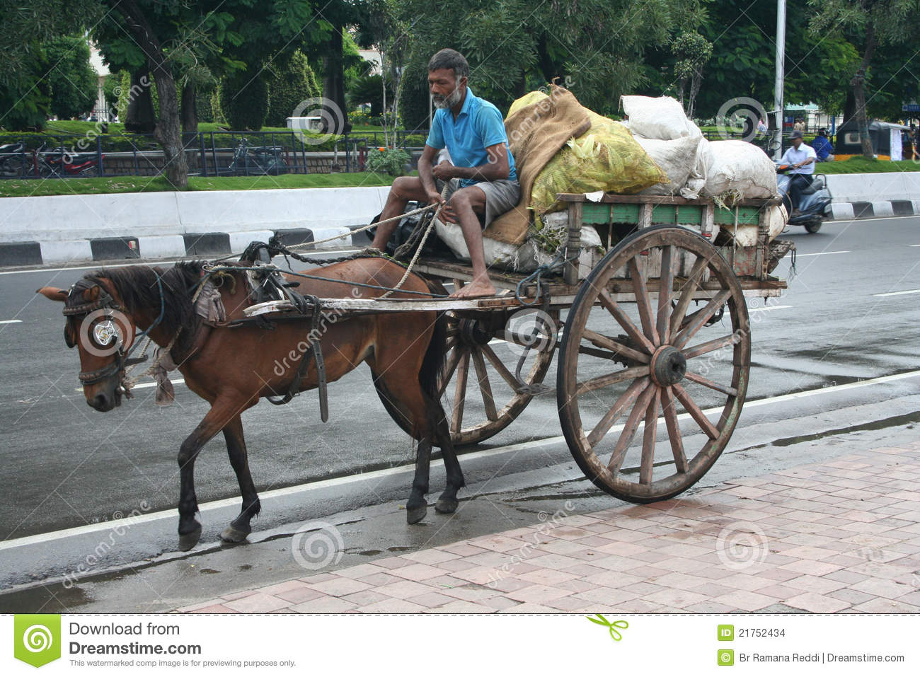 Indian Horse Cart In The Environmental Initiative. Editorial Stock.