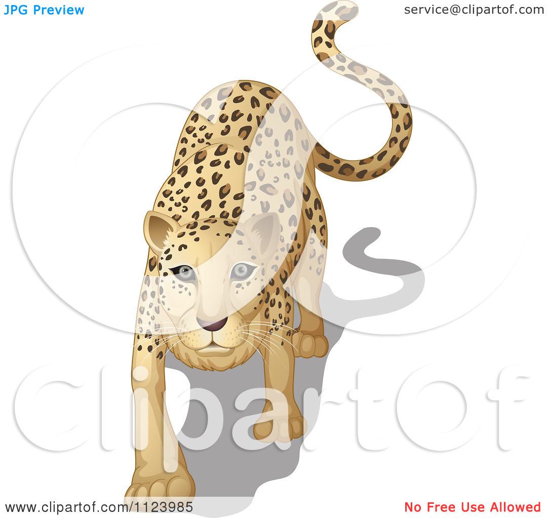 Cartoon Of A Stalking Leopard.