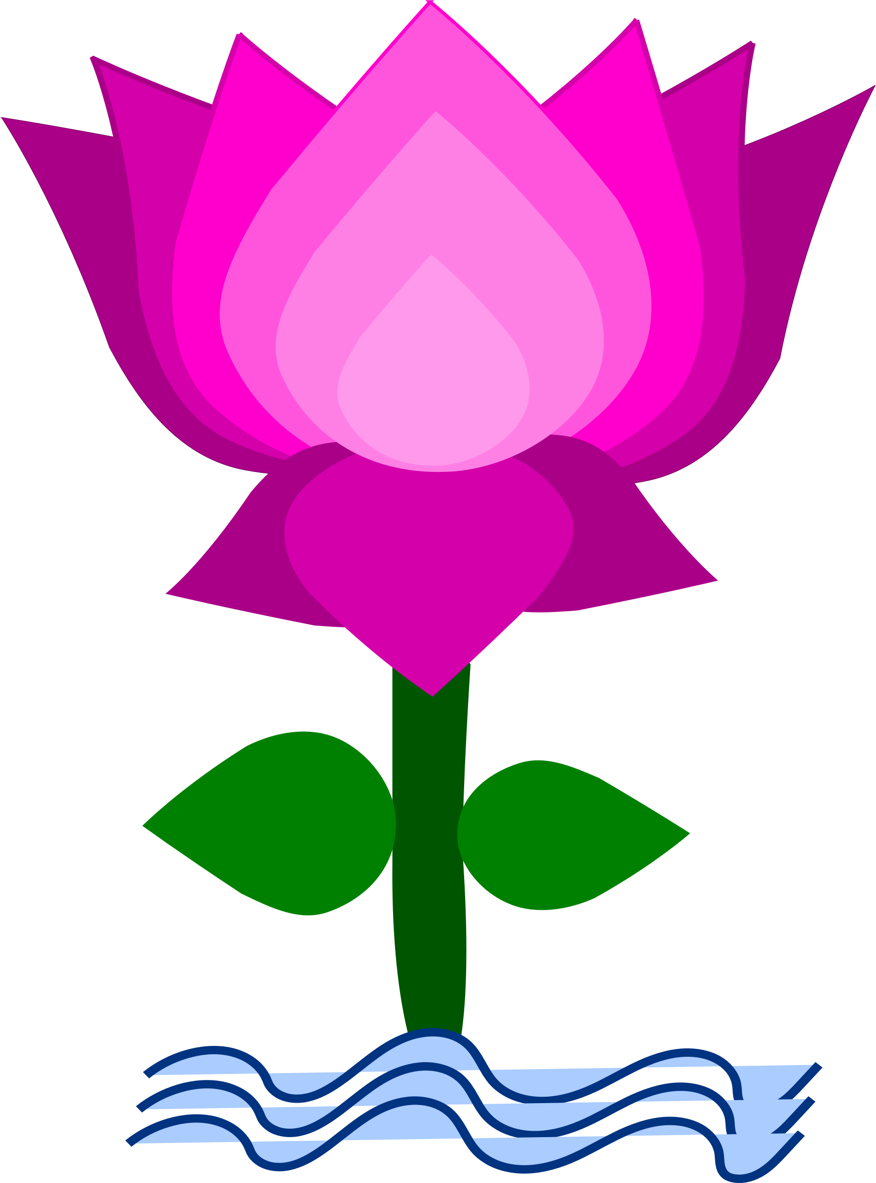 indian lotus clipart