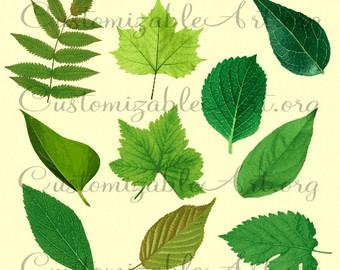 Leaf Clipart Digital Leaves Clip Art Grape Leaf by CustomizableArt.