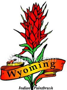 State Flower, the Indian Paintbrush with Gold Wyoming Banner.