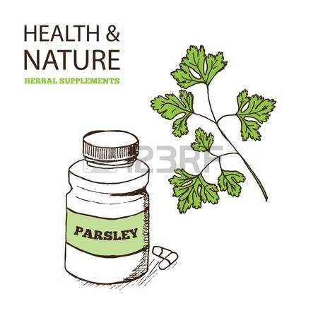 1,191 Parsley Symbol Stock Illustrations, Cliparts And Royalty.