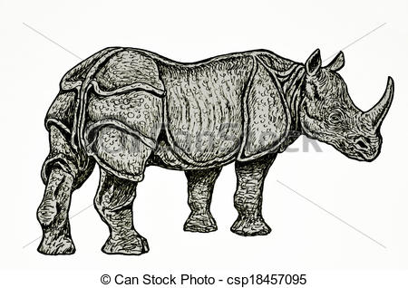 Indian rhinoceros Clip Art and Stock Illustrations. 512 Indian.