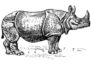 Suisai (Indian Rhinoceros) Clip Art Download.