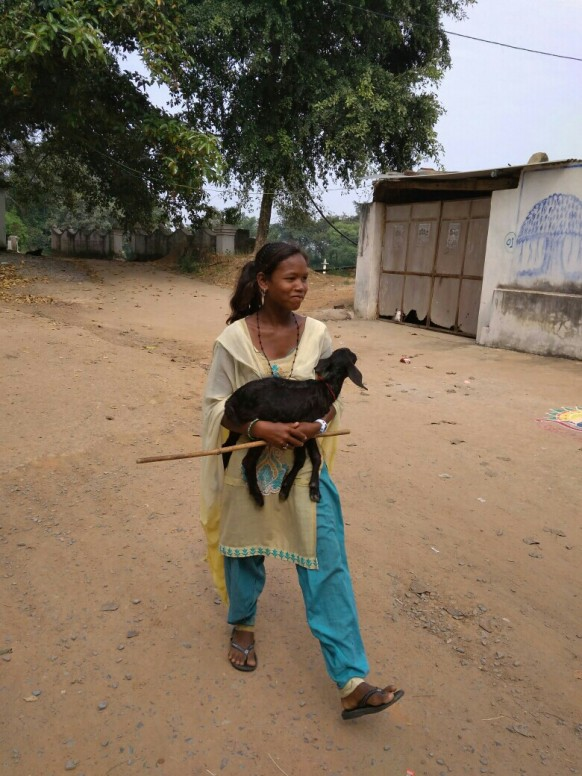 Rural Indian Village girl working after go to school.