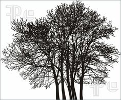 indie black and white tree clipart #1