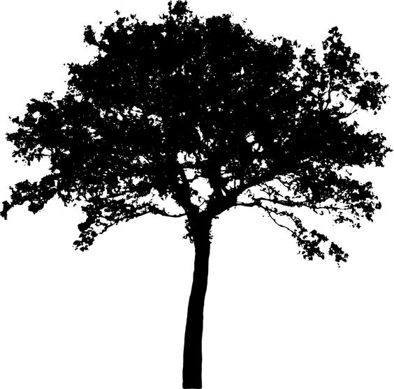 indie black and white tree clipart #10