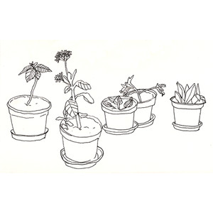 drawing Black and White indie black flowers ink bambi plants.