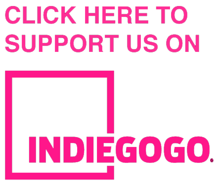IndieGoGo logo Crowdfunding Fundraising Campaign Expecting Sunshine.