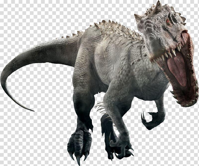Gray indominus rex, Tyrannosaurus YouTube Indominus rex Jurassic.