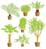 Indoor Plants Clip Art.
