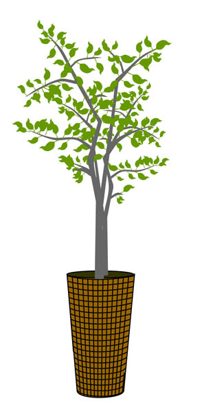 Indoor Potted Tree Clipart.